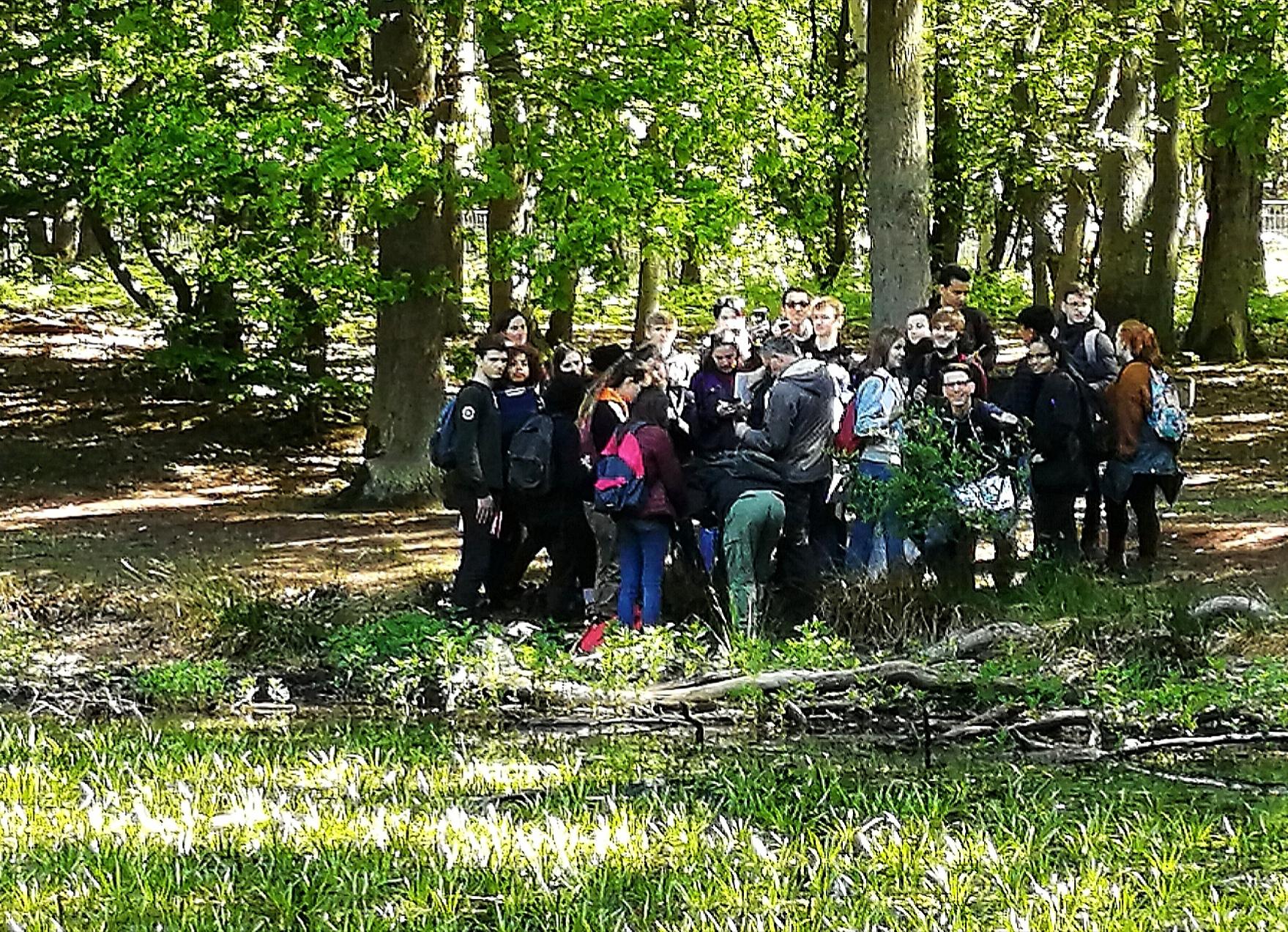 Sortie des 1ères S à la forêt du Rouvray - 16/05/2019